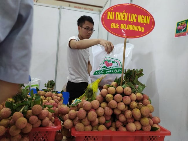 Gian truân hành trình nâng cao giá trị quả vải Bắc Giang