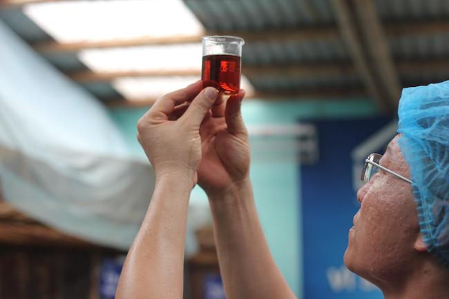 Nước mắm: Từ mâm cơm Việt đến nhà bếp của thế giới