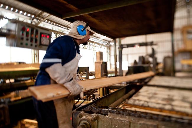 Chiến lược phục hồi của doanh nghiệp chế biến gỗ 1