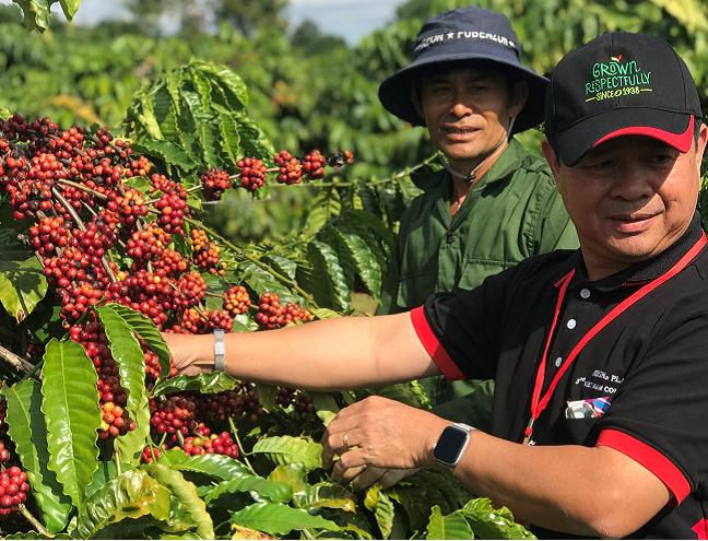 Nestlé hỗ trợ nông dân trồng cà phê lãi 40 triệu/ha/năm