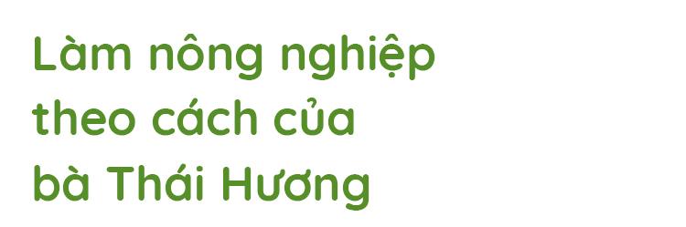 """""""100 bà Thái Hương"""" và lời giải cho bài toán đưa Việt Nam thành cường quốc nông nghiệp 2"""
