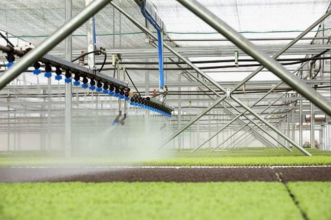 Đường bay giúp 'cất cánh' nông nghiệp công nghệ cao 2