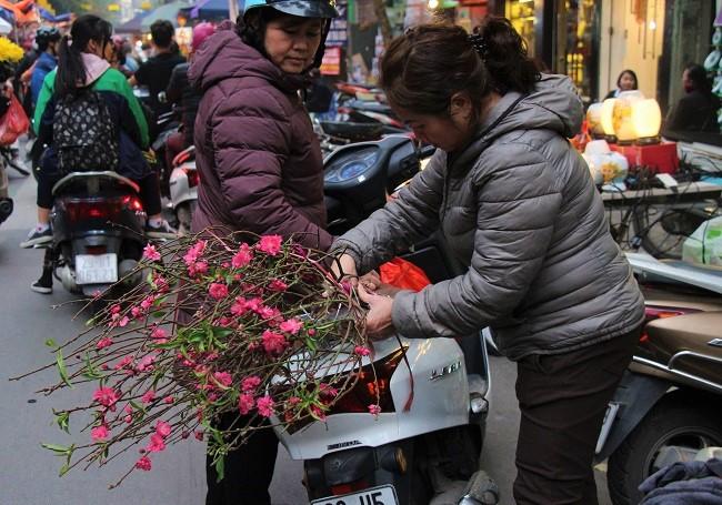 Chợ hoa phố cổ rực đỏ đón Tết Kỷ Hợi