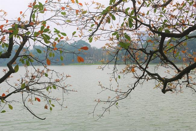 Hà Nội đẹp dịu dàng mùa thay lá