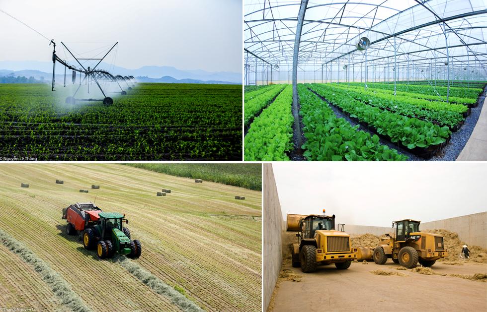Bài toán đặt hàng của Thủ tướng cho toàn ngành nông nghiệp Việt Nam và lời giải của TH 6