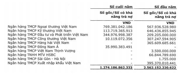 Vietnam Airlines tăng hơn 5.000 tỷ đồng vay ngắn hạn