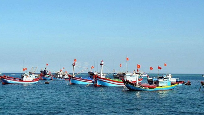 Khuyến nghị của EC để gỡ 'thẻ vàng' thủy sản sau 10 ngày kiểm tra tại Việt Nam