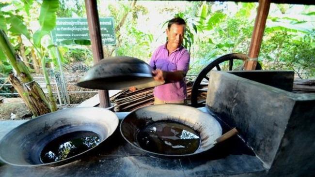 Học nông dân Thái làm du lịch 7