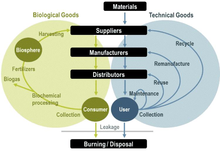 Kinh tế tuần hoàn: Tương lai của chuỗi cung ứng