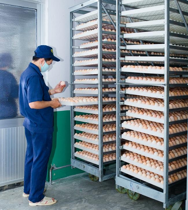 Masan MEATLife chính thức sở hữu 51% công ty thịt gia cầm 3F VIỆT