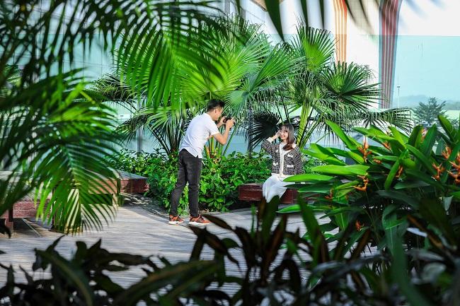 Lạc lối giữa sân bay sinh thái xanh nhất Việt Nam 4