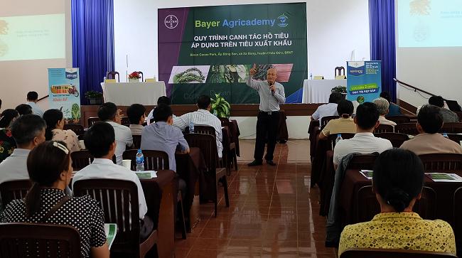 Bayer giúp nông dân Việt Nam sản xuất hồ tiêu đạt chất lượng xuất khẩu