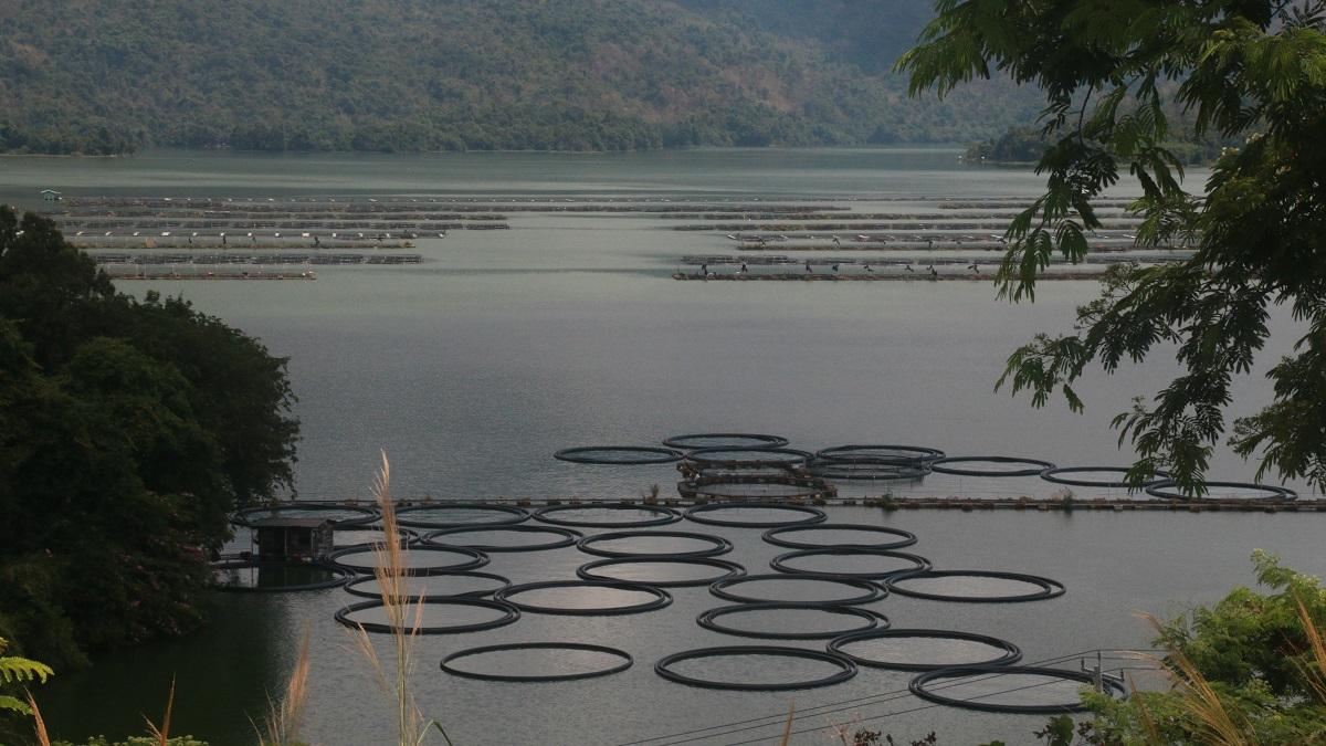 Nhật ký hành trình hậu Covid-19: Kỳ 2 - Hồ và thác ở Đa Mi 2