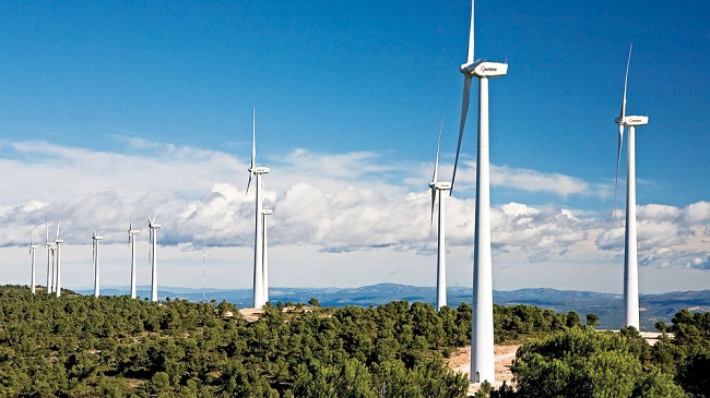Dự án điện gió thấp thỏm chính sách