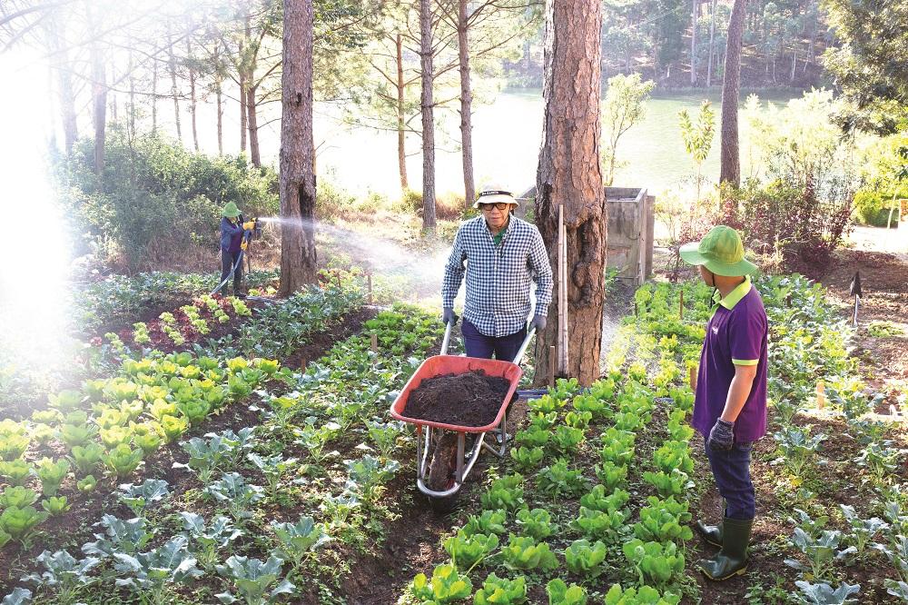 Người truyền cảm hứng cho nền nông nghiệp hữu cơ 1