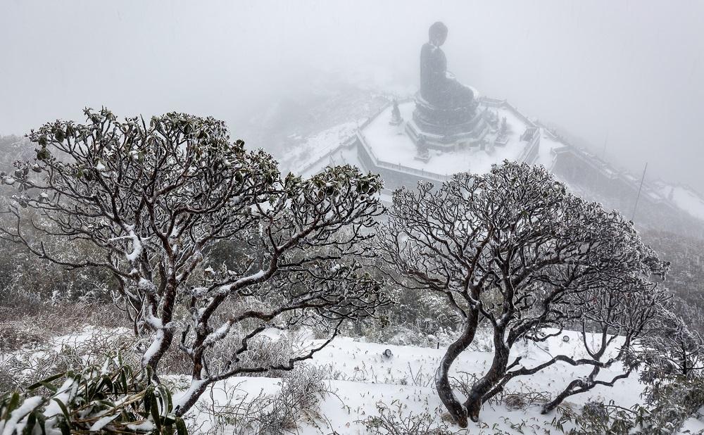 Đỉnh Fansipan đẹp huyền ảo với 'giấc mơ tuyết trắng' 8