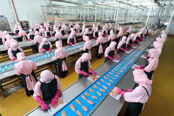 'Làm cho nông nghiệp Việt Nam phát triển không thua kém bất kỳ nước nào' 1