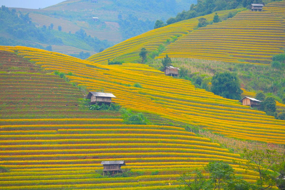 Du lịch Việt Nam đang ở đâu để cất cánh?