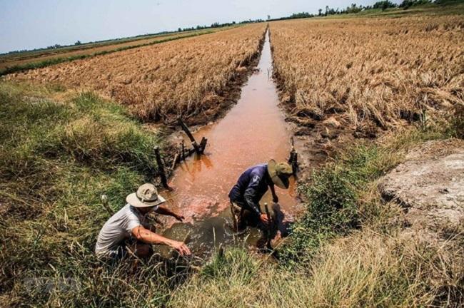 Tập trung nguồn lực đầu tư phát triển đồng bằng sông Cửu Long 1