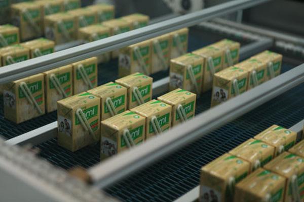 Hàng loạt ông lớn ngành sữa bế tắc tìm đường phát triển