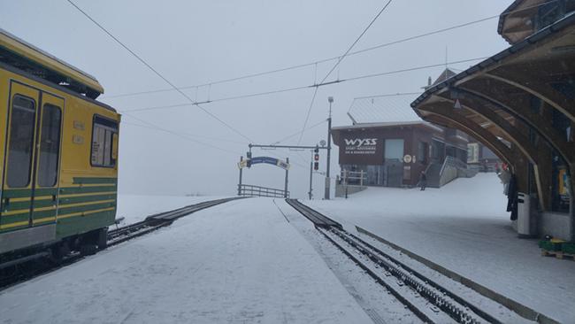 Cuộc phiêu lưu vào lòng tuyết 9