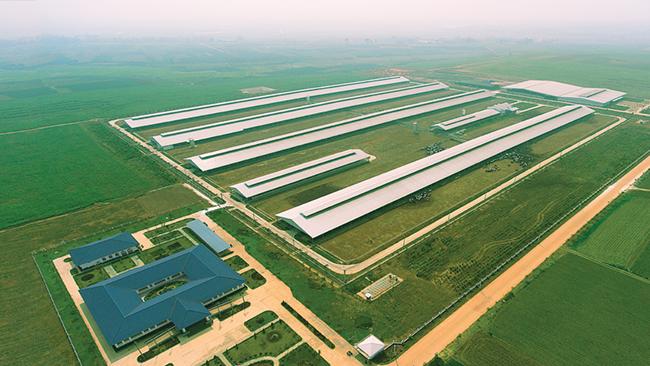 Vinamilk mở rộng đầu tư thêm trang trại tại Cần Thơ