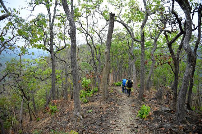Trekking Tà Năng – Phan Dũng: Cung đường không dành cho những người yếu đuối 20