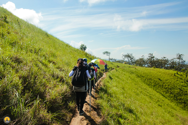 Trekking Tà Năng – Phan Dũng: Cung đường không dành cho những người yếu đuối 19