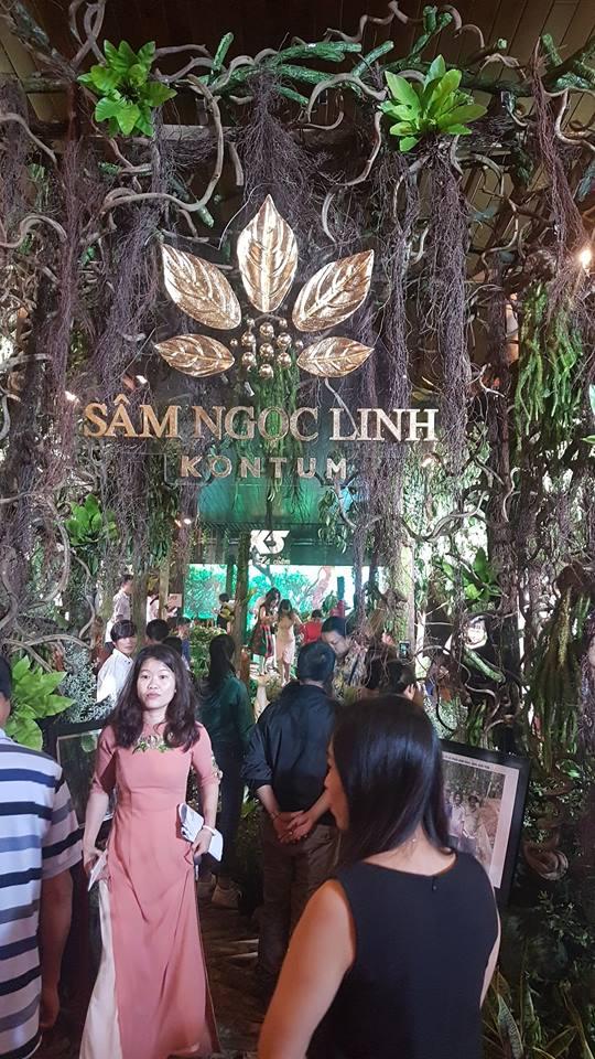 Khám phá các loại sâm và dược liệu của đại ngàn Kon Tum
