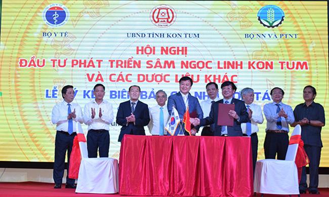 Người dân Việt Nam sắp không còn phải mua sâm Ngọc Linh giả? 2