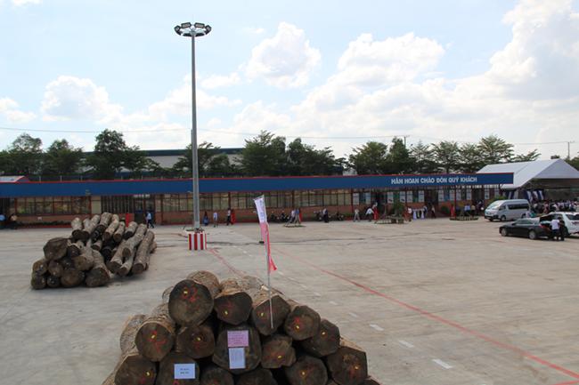 Khám phá khu phức hợp cung ứng ngành gỗ lớn nhất miền Nam 3