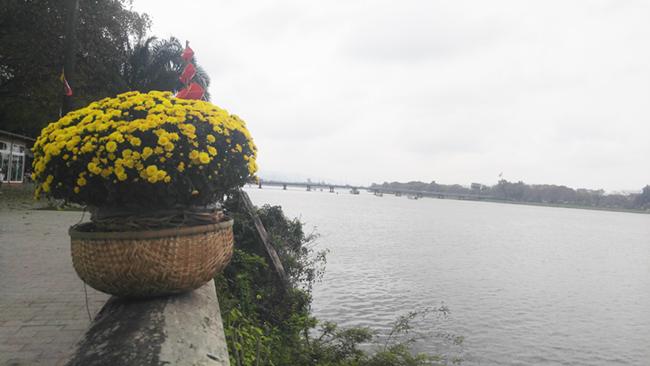 Cầu gỗ lim tiền tỷ trên sông Hương – địa điểm check-in hot nhất Tết 2019 ở Huế 3