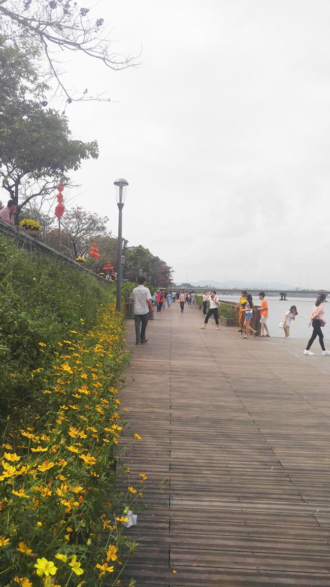 Cầu gỗ lim tiền tỷ trên sông Hương – địa điểm check-in hot nhất Tết 2019 ở Huế 6