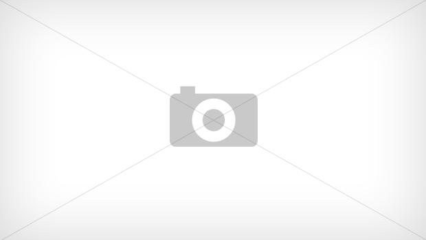 Nền tảng hoàn tiền ShopBack chính thức ra mắt thị trường Việt Nam