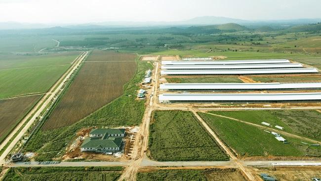Tổ hợp trang trại Vinamilk tại Lào dự kiến đi vào hoạt động đầu năm 2022