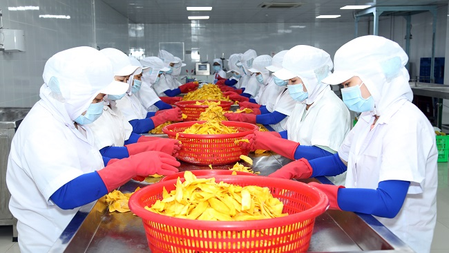 Nữ tướng Lương Gia và khát vọng nâng tầm nông sản Việt